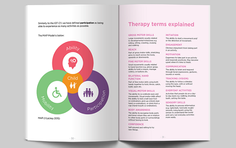 International Classification of Functioning, Disability and Health for Children and Youth (ICF-CY)